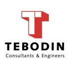Тебодин